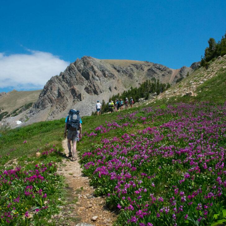 Teton Crest backpacking