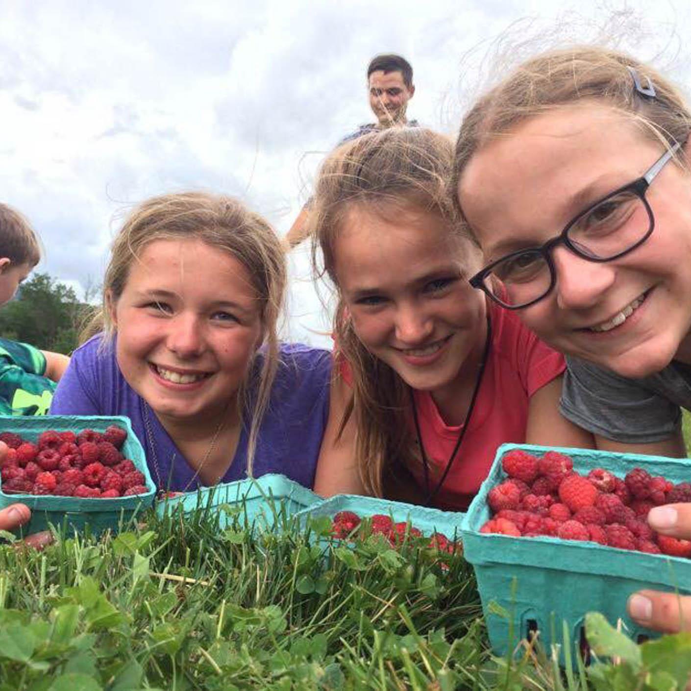 Adirondack Discovery raspberry picking