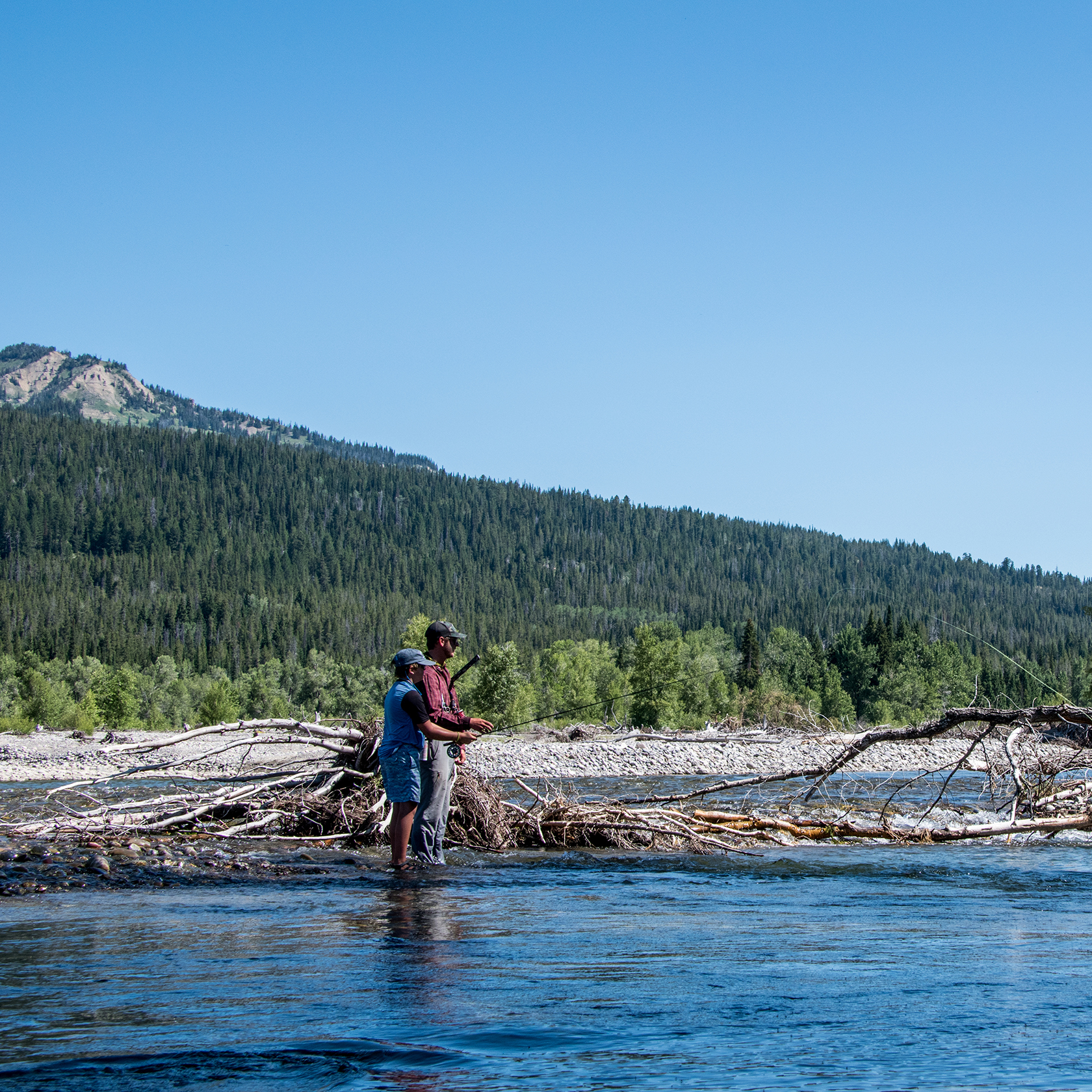 Travelers fly fishing on the Jackson Hole Fly Fishing trip