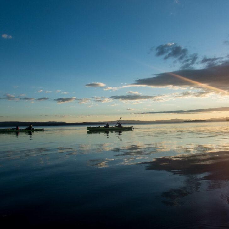 Yellowstone Teton Discovery kayaking