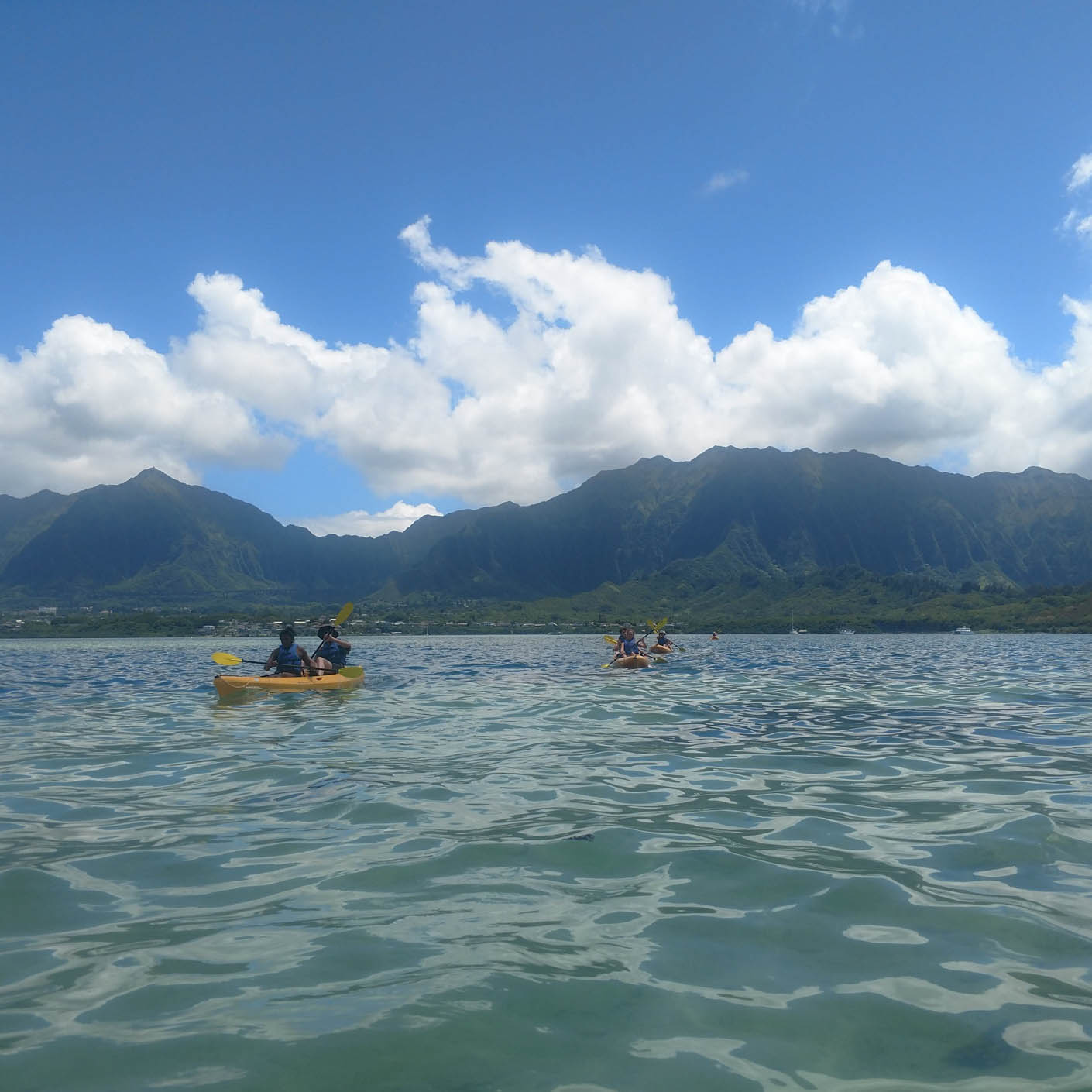 Hawaii Service sea kayaking