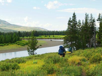 Yellowstone Wilderness hiking