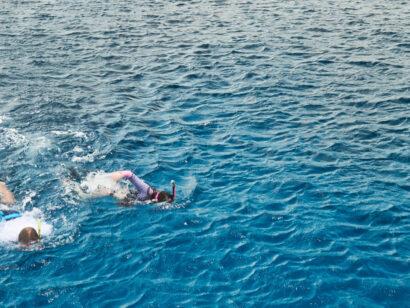 Hawaiian Islands snorkeling