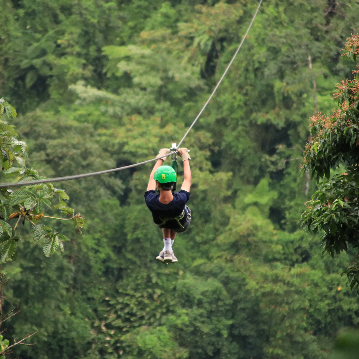 Ziplining on the Costa Rica Pura Vida trip